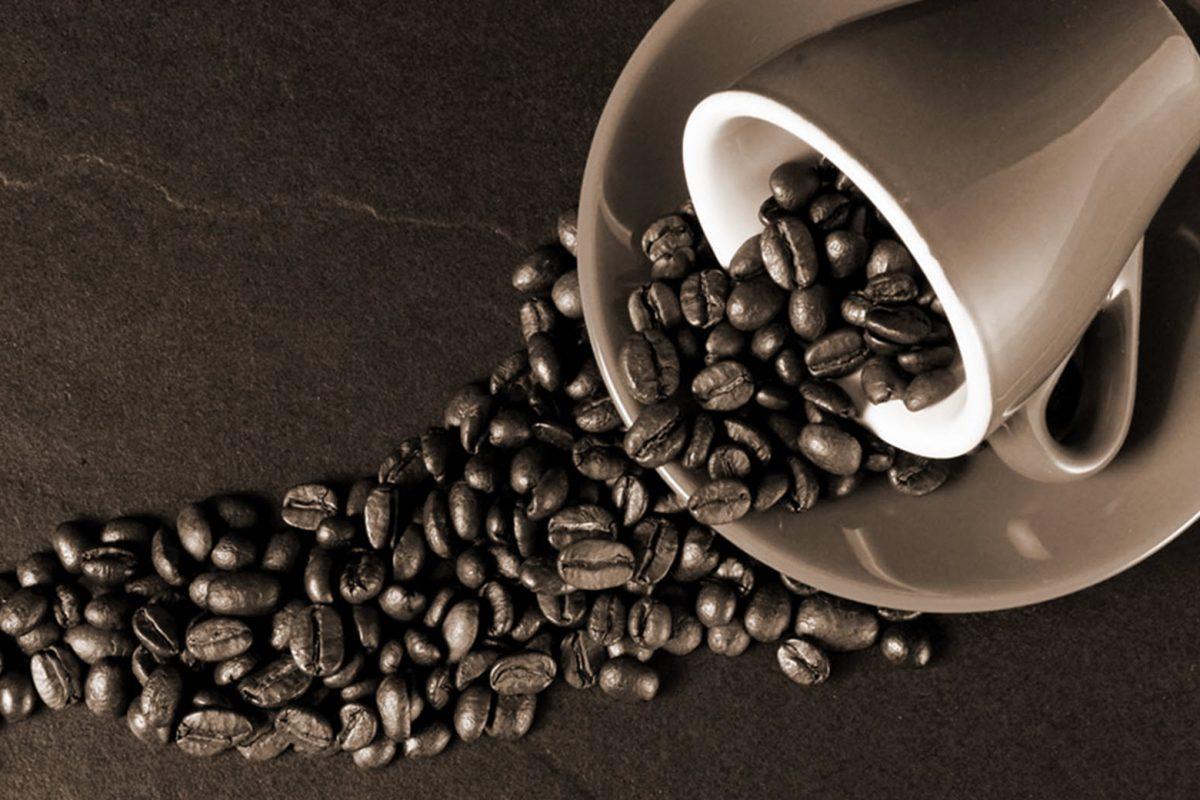 Coffee Special: Μάθετε τα πάντα για τον καφέ!